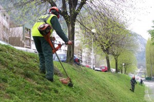 Entretien d 39 espaces verts pays voironnais ad quation for Offre emploi entretien espaces verts