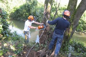 entretien de rivière Emplois Verts