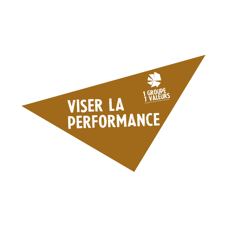 Viser la performance